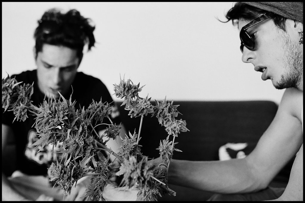 Boys harvesting plants. Berlin, Germany. 2012 © Linus Ma. all rights reserved