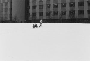 A mother with her two children sledding