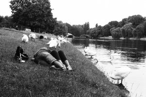 Cuddling couple on the water surrounded by swans. Kreuzberg. Berlin, Germany. 2016 © Linus Ma. all rights reserved / www.linusma.com